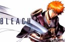 Photo de All-about-Bleach-X