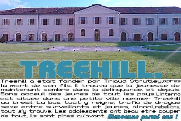 internshipxtreehill