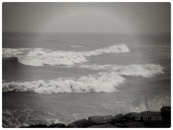 Hauteville sur Mer (50)