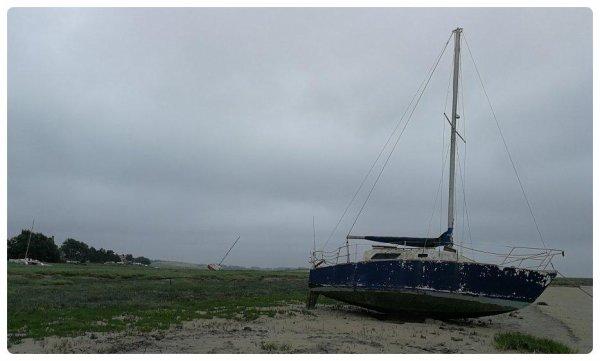 Regnéville sur Mer (50)