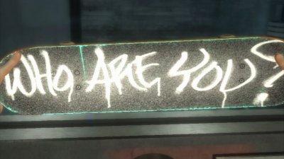Shaun White : Skateboarding