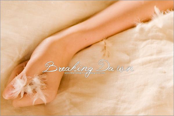 .BEHIND THE SCENE : Breaking Dawn Photo de Breaking Dawn posté par Bill Condon sur son Twitter. On peux y voir le bras de Bella après qu'elle est fait l'amour avec Edward au matin de sa lune de miel ... magnifique photo ! .