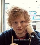 Photo de Sheeran-Ed-skps8