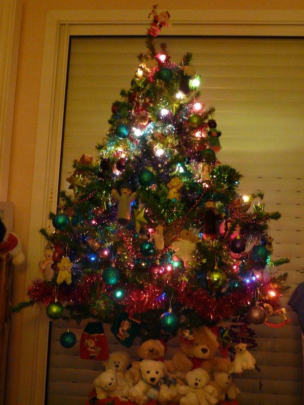 Noël.... avec du retard ! Les sapins !