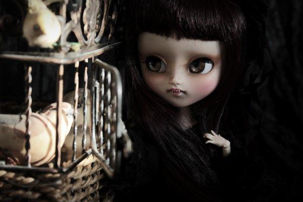 ~ Sors de ta cage ~