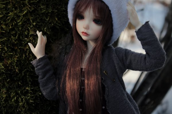 ♥ Dylane ♥