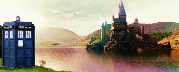 """""""Harry Potter ne connaît même pas sa propre histoire, alors que dans notre monde, tous les enfants connaissent son nom !"""" Rubeus Hagrid"""