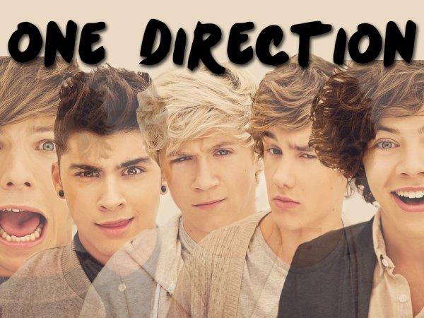 Quel membre des One Direction préférez-vous?