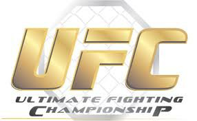Blog de UFC-936