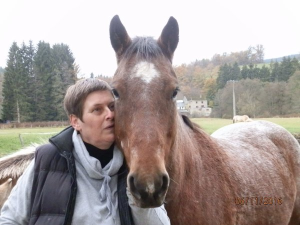 Quarter-horse, Tweeter, puissant et amitieux hongre de 2009.