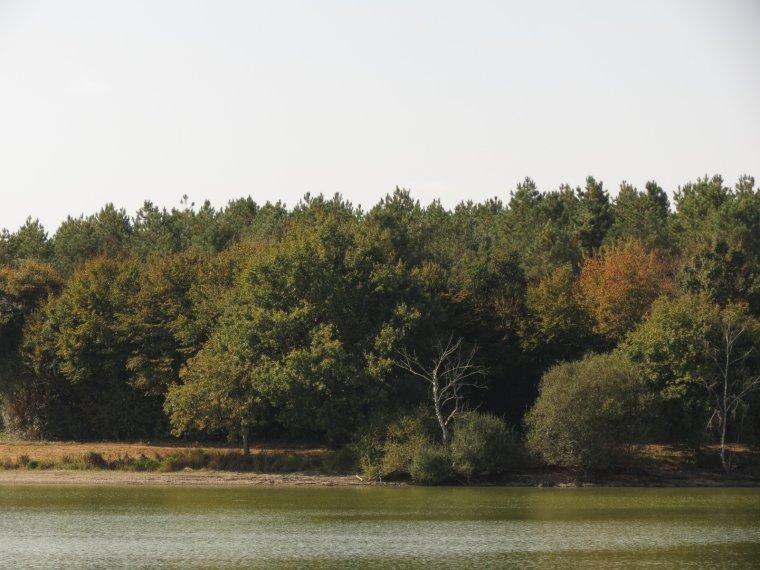 1324 couleurs d'automne