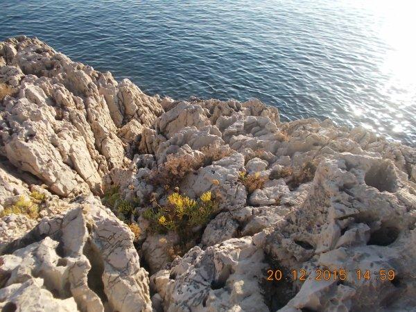 nature et paysage(2)