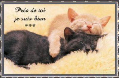 Prends Moi Dans Tes Bras Blog De Lamia1255