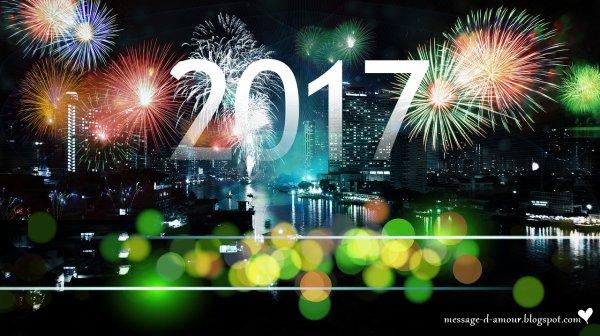 Bonne Année 2017 ! ! !