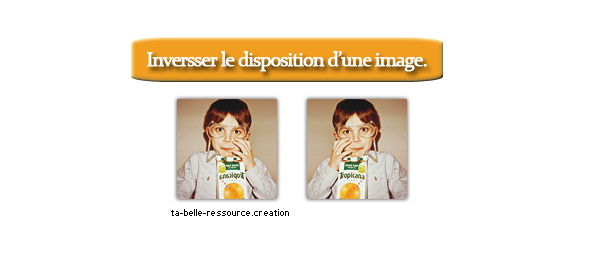 Inversser la disposition d'une image