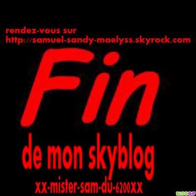fin du skyblog