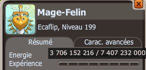 2.8 : Let's Go ! (Mage)
