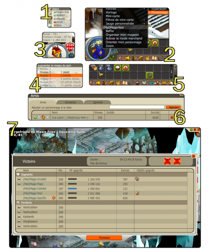 Version 2.11 (Mage)