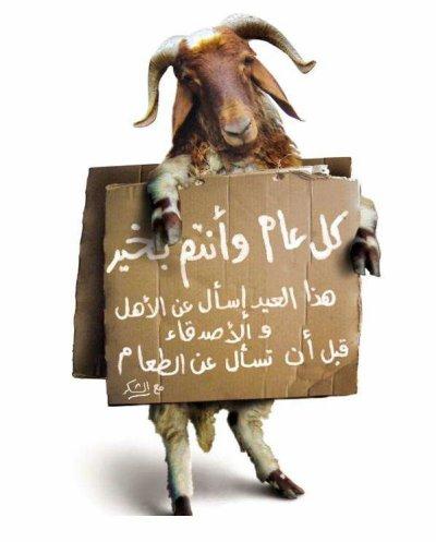 Ide moubarak Said Bone fête du Mouton