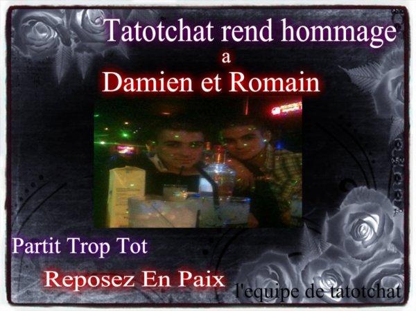 Hommage a Damien  et Romain reposez en paix <3