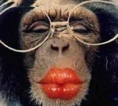 spéciale singe lol ;)
