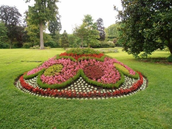 Le jardin du Roi - Versailles