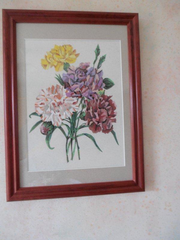 Oeillets variés (Dianthus caryophyllus) d'après une illustration de Pierre-Joseph Redouté