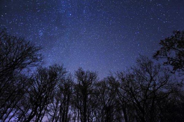 """""""Si un jour la vie vous jette à terre, levez les yeux, au dessus de vous il y a les étoiles """""""