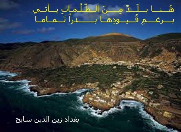 بيت شعري للأديب بغداد سايح عن حلمه الأخضر