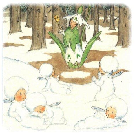 Le perce-neige ... quelques gravures