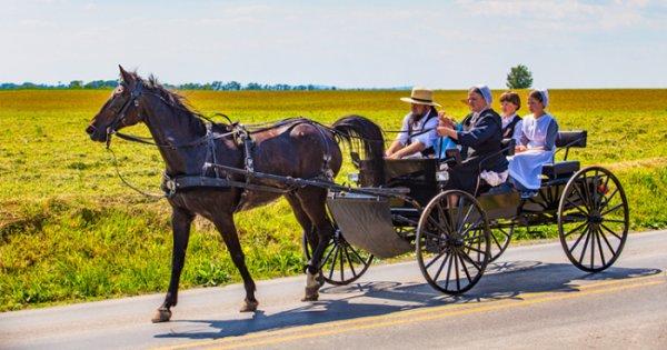 rencontres en ligne pour Amish