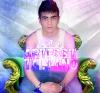talyano-professional2015