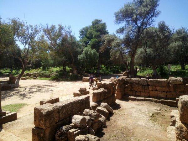 Tipaza Algérie