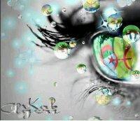 Je ne suis pas parfaite mais au moins je suis kabyle