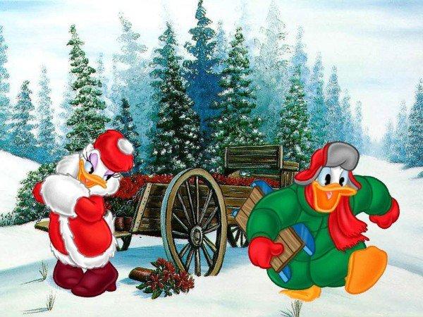 Donald & Daisy !