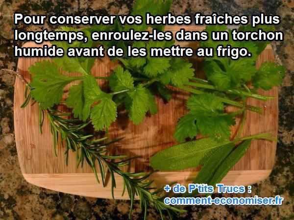 Conservation des Herbes Fraîches :