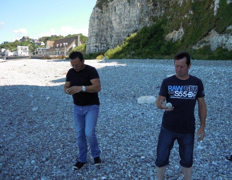 Veulettes sur mer