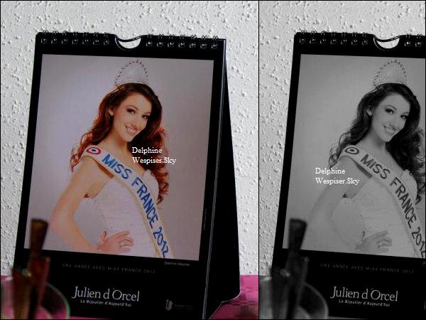 11/07/12 : Delphine pour Julien d'Orcel