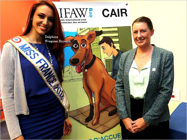 15/10/12 : IFAW