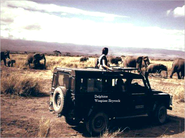 02/11/12 : Kenya