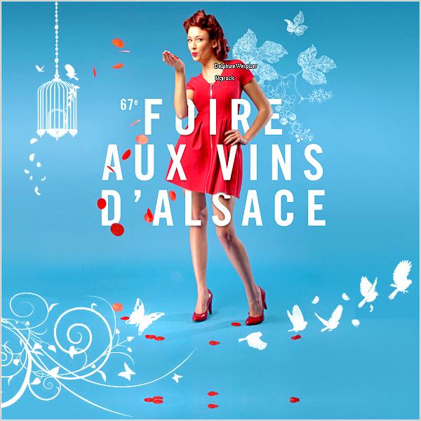 18/02/14 : Foire aux Vins d'Alsace - Votre Alsace