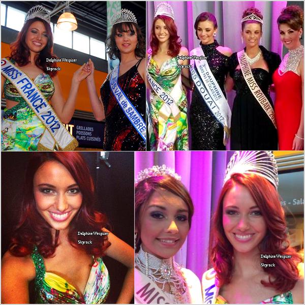 20/04/14 : Miss Val de Sambre 2014