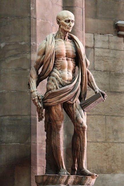 """Dans le Cabinet Des Curiosités De Lenore:""""St Barthélemy l'Ecorché Vif"""""""