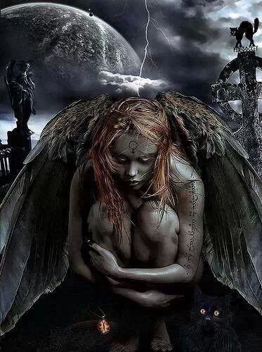 Belle ange