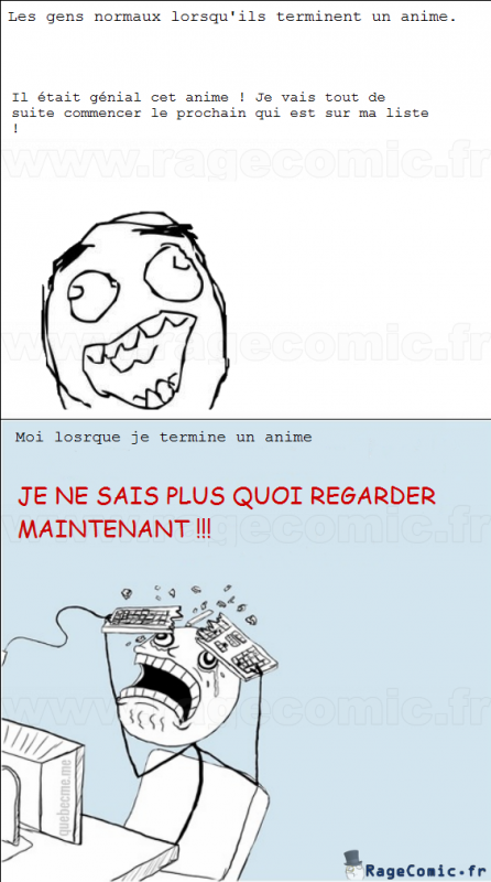 Quand on fini un anime...