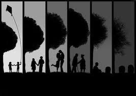 La vie est une voie magique
