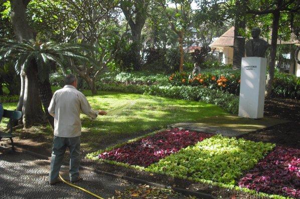 158    Le jardin municipal de Funchal