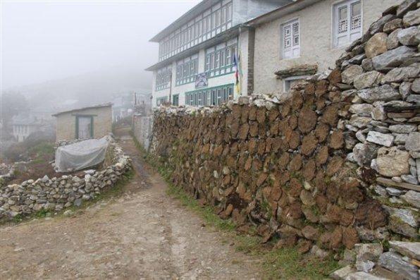 314  Le Népal (suite )