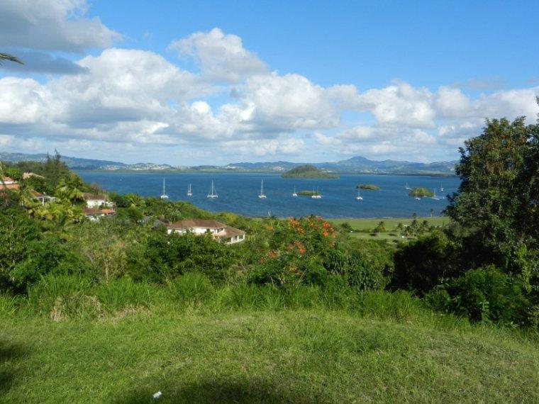 565  La Martinique : carte postale