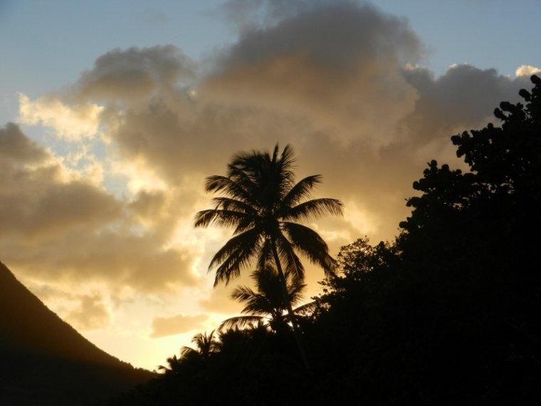 569 La Martinique: paysages